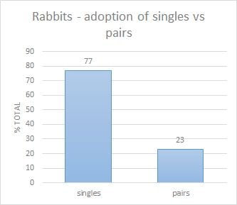 adoption singles pairs