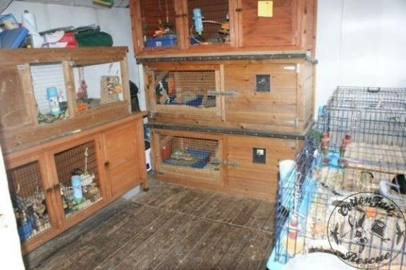 gp-shed-1-27.2.13