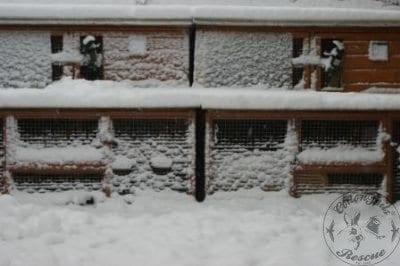 gen_snow_on_hutches_2013