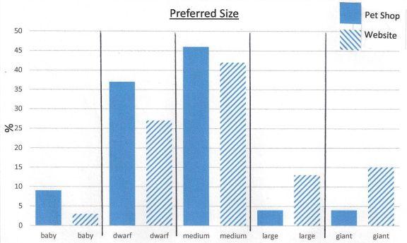 pet shop comparison size