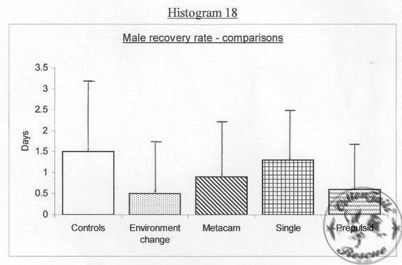 HISTOGRAM-18-8.5.13