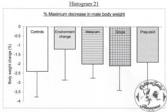 HISTOGRAM-21-8.5.13