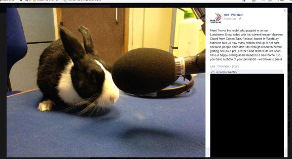 Trevor in the studio - websize screenshot