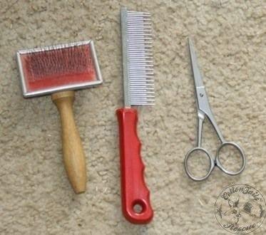 gen_comb_and_scissors