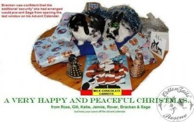 gen_CHRISTMASCARD__25_5_10